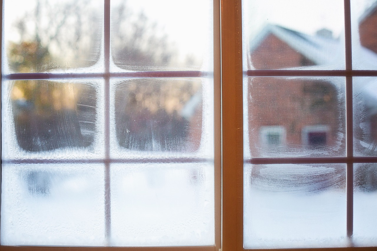 frost window moisture