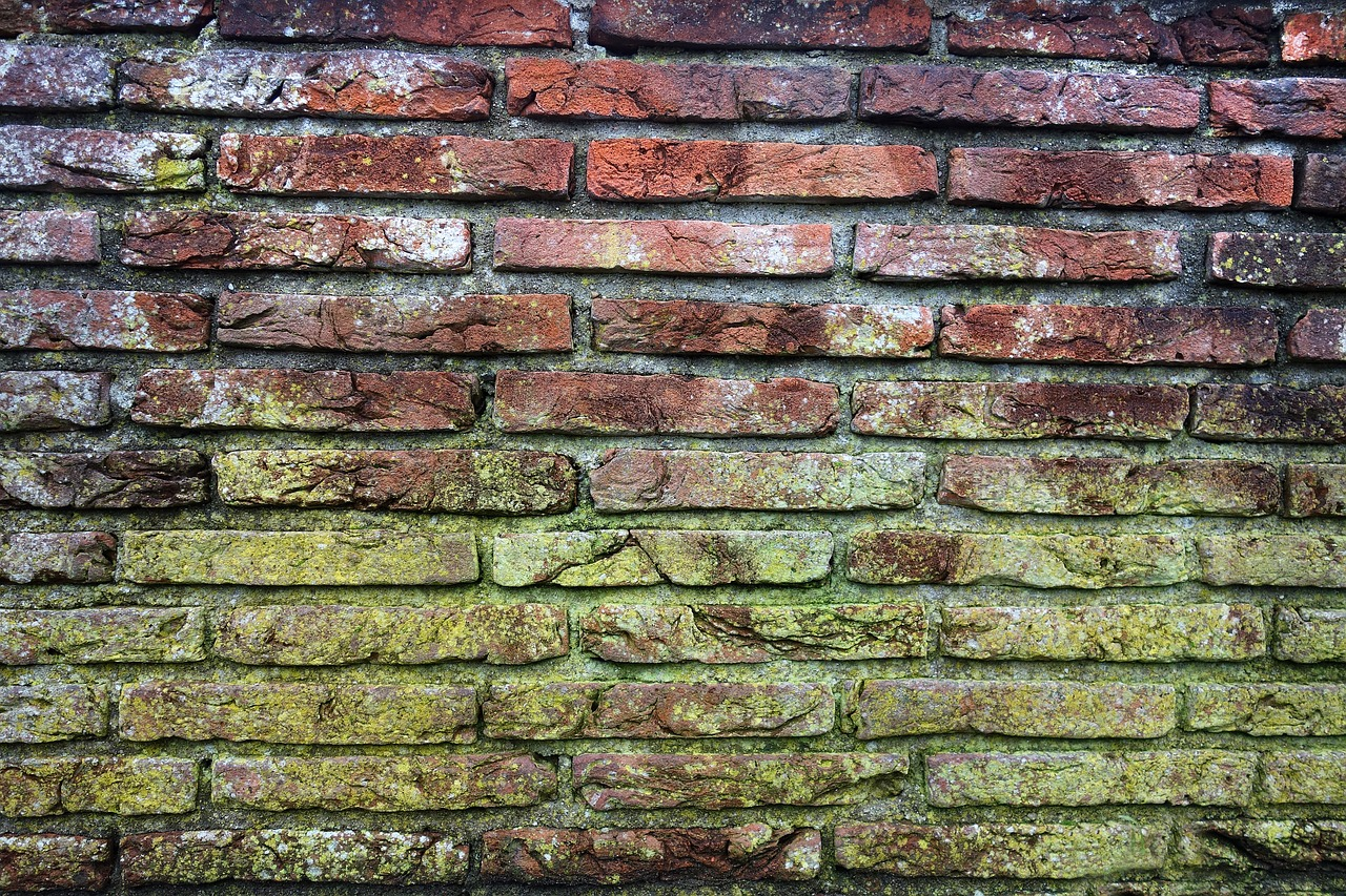 brick wall mold